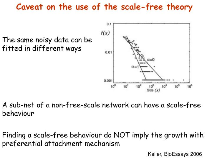 Caveat on the use of the scale-free theory