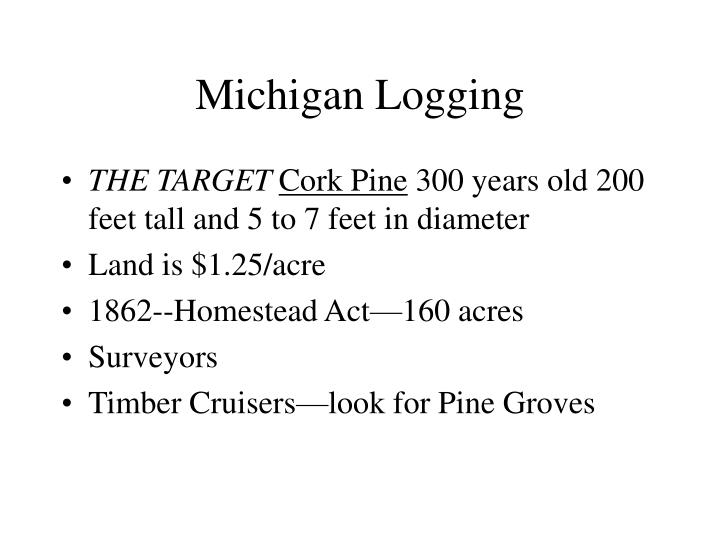 Michigan Logging