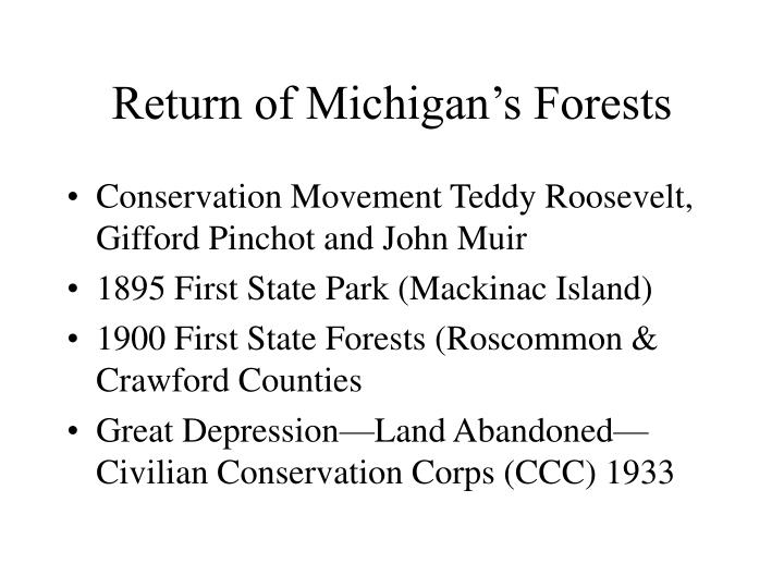 Return of Michigan's Forests