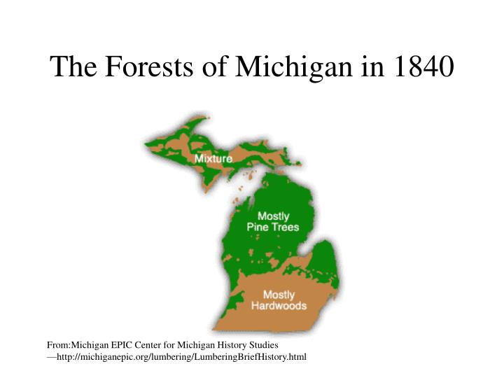The Forests of Michigan in 1840