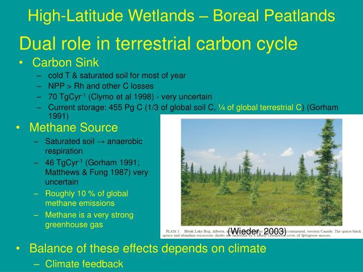 High-Latitude Wetlands – Boreal Peatlands