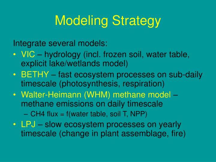 Modeling Strategy