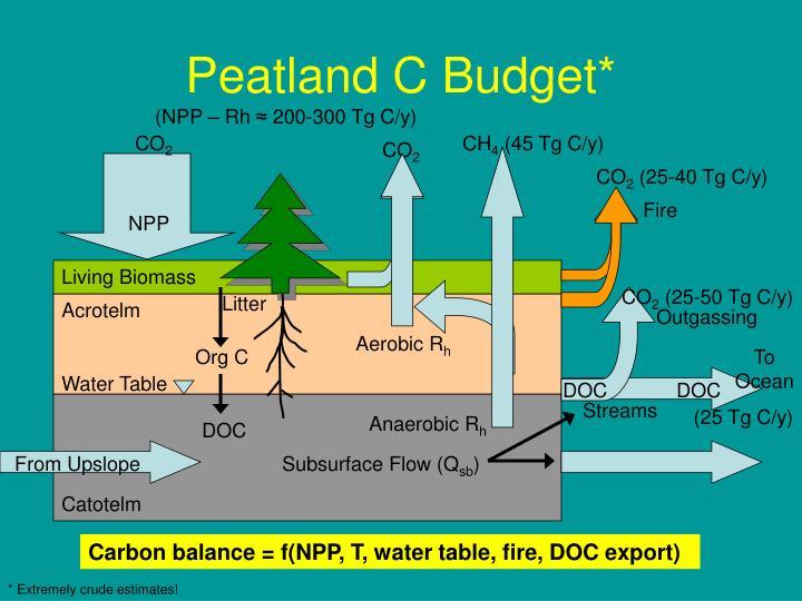 Peatland C Budget*