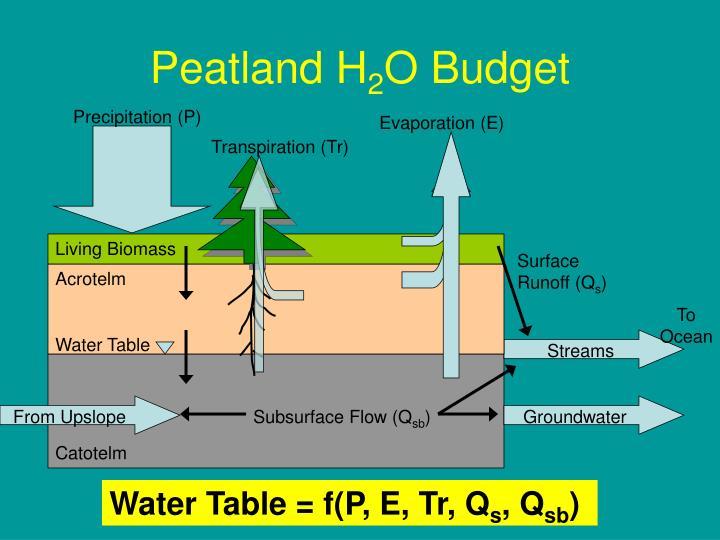 Peatland H