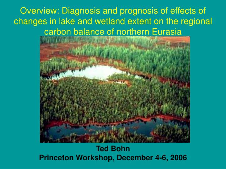 Overview: Diagnosis and prognosis of effects of changes in lake and wetland extent on the regional carbon balance of northern Eurasia