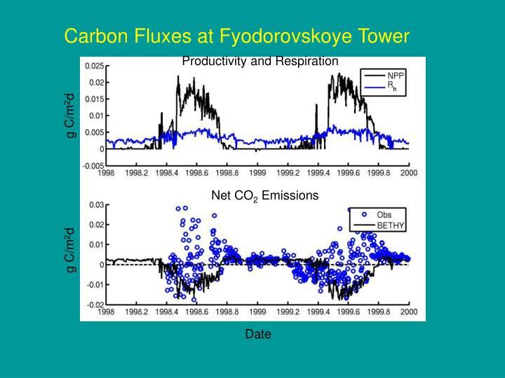 Carbon Fluxes at Fyodorovskoye Tower