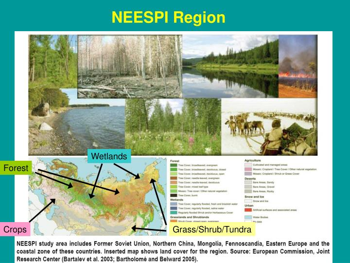 NEESPI Region