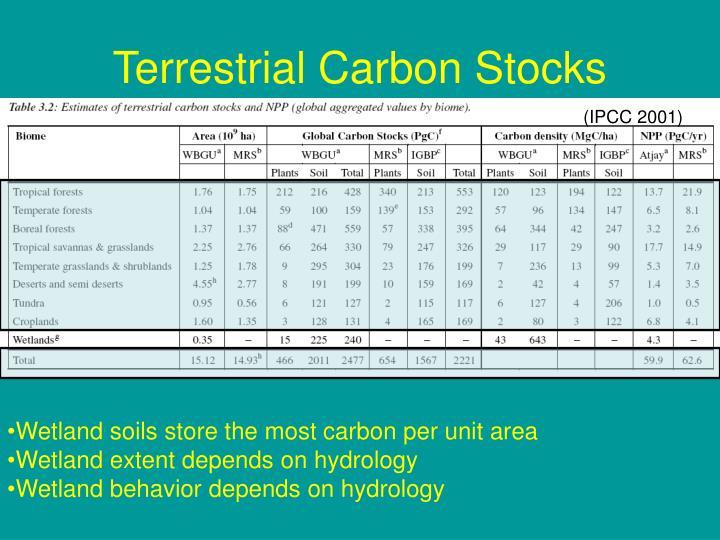 Terrestrial Carbon Stocks