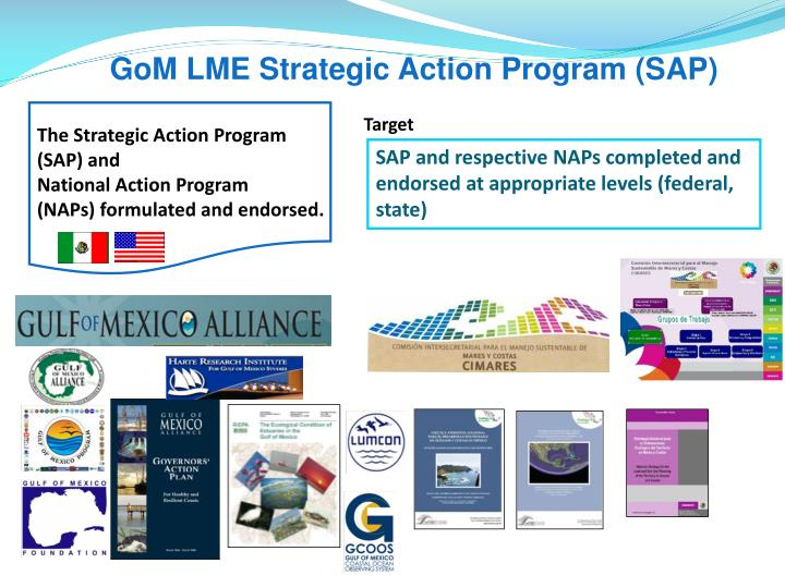 GoM LME Strategic Action Program (SAP)