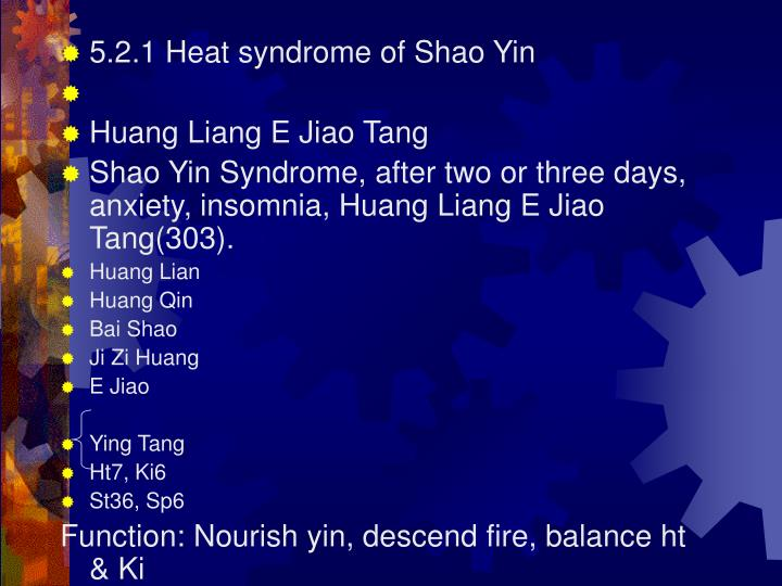 5.2.1 Heat syndrome of Shao Yin