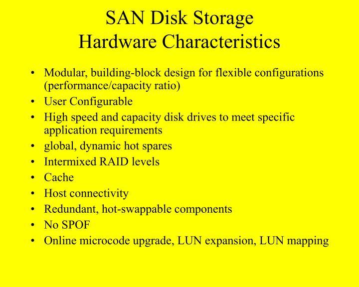 SAN Disk Storage