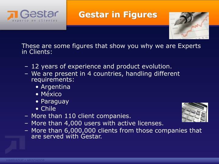 Gestar in Figures