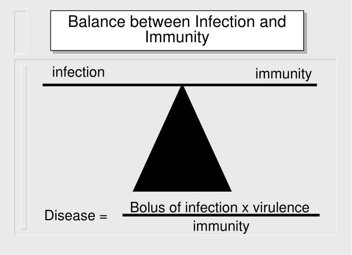 Bolus of infection x virulence