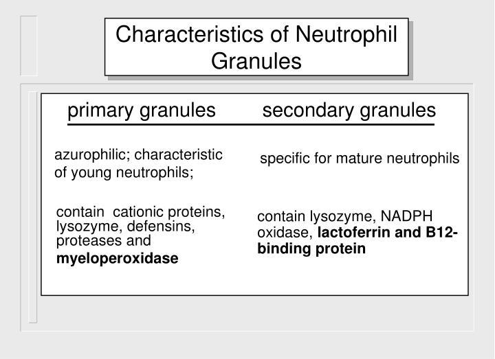 Characteristics of Neutrophil Granules