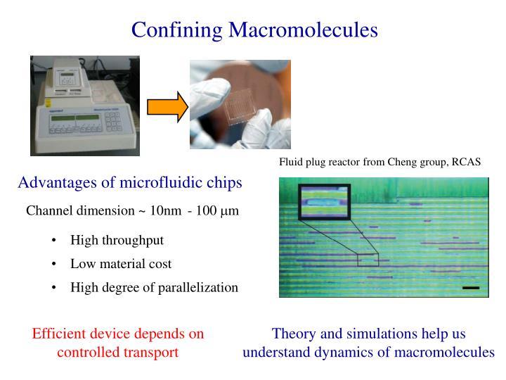 Confining Macromolecules