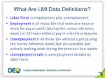 what are lmi data definitions
