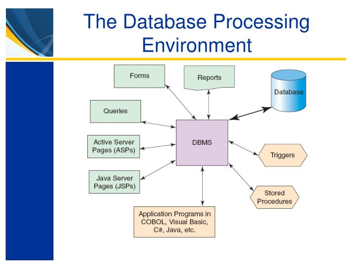 The Database Processing Environment