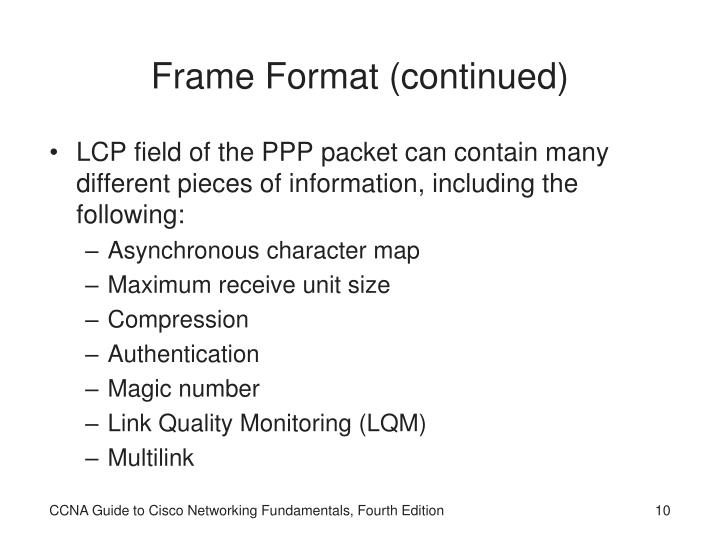 Frame Format (continued)