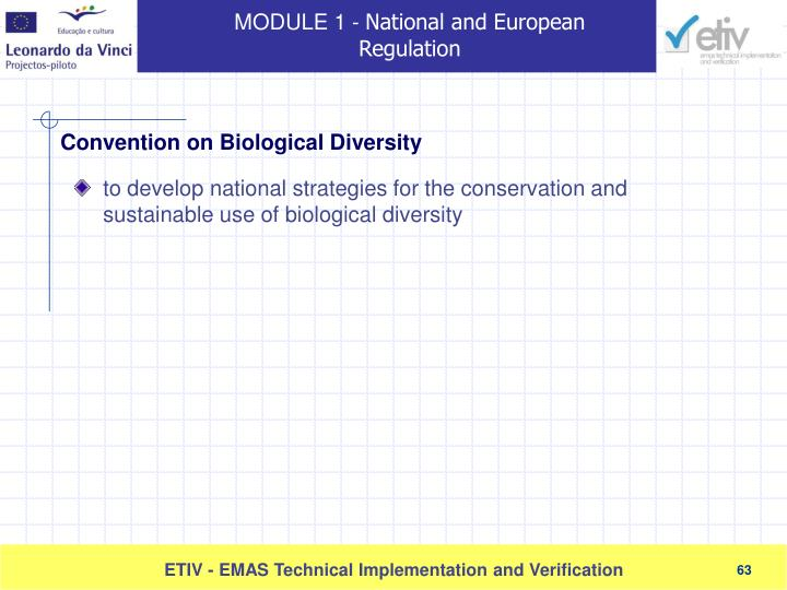 to develop national strategies for the conservation and sustainable use of biological diversity