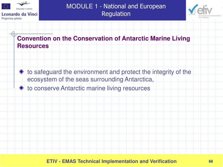 to safeguard the environment and protect the integrity of the ecosystem of the seas surrounding Antarctica,