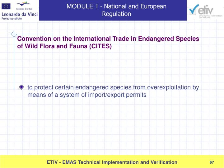 to protect certain endangered species from overexploitation by means of a system of import/export permits