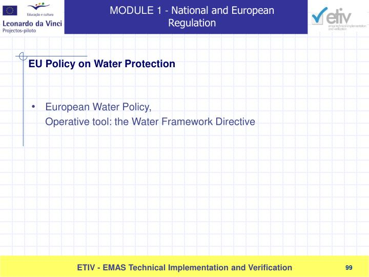 European Water Policy,