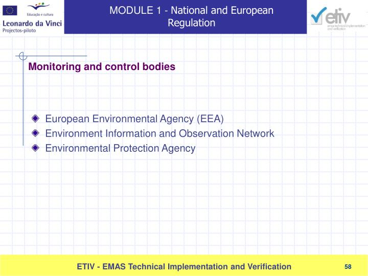 European Environmental Agency (EEA)