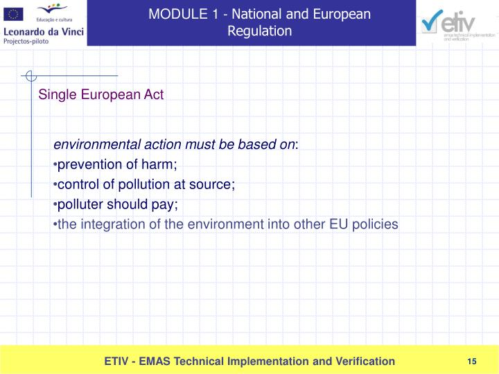 environmental action must be based