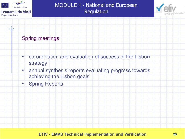 co-ordination and evaluation of success of the Lisbon strategy