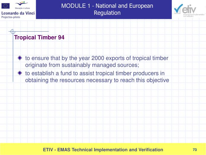 to ensure that by the year 2000 exports of tropical timber originate from sustainably managed sources;
