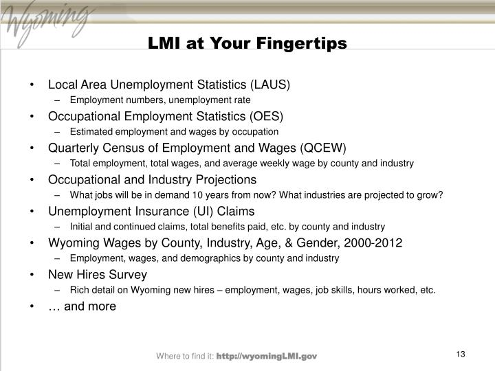 LMI at Your Fingertips