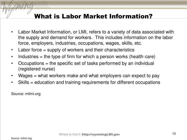 What is Labor Market Information?