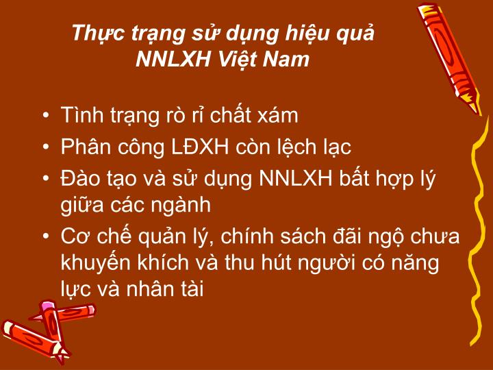 Thực trạng sử dụng hiệu quả NNLXH Việt Nam
