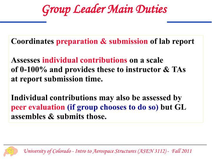 Group Leader Main Duties