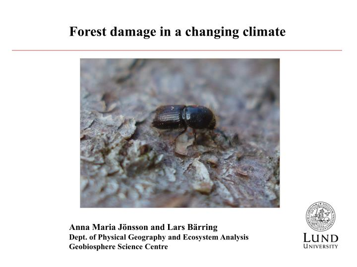 Forest damage in a changing climate