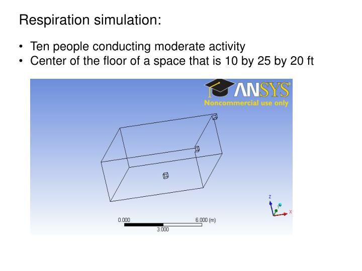 Respiration simulation: