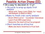 possible action items ii