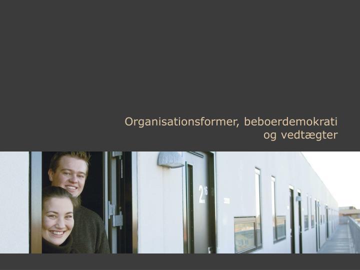 Organisationsformer, beboerdemokrati