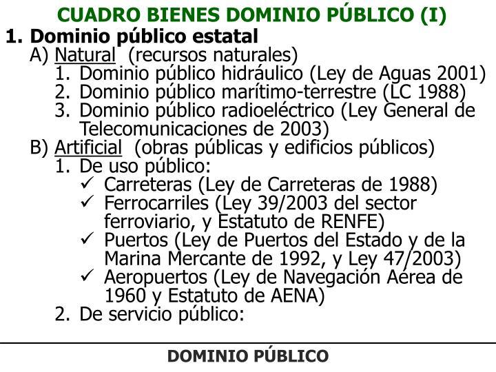 CUADRO BIENES DOMINIO PÚBLICO (I)