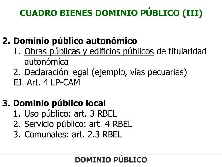 CUADRO BIENES DOMINIO PÚBLICO (III)