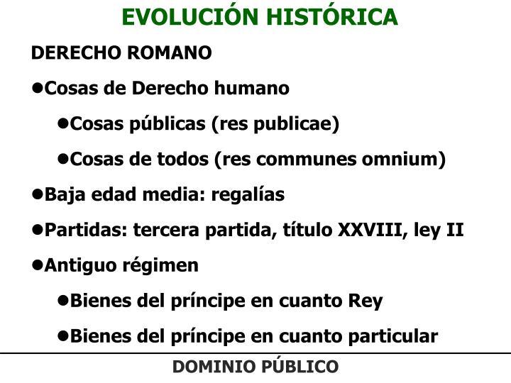 EVOLUCIÓN HISTÓRICA