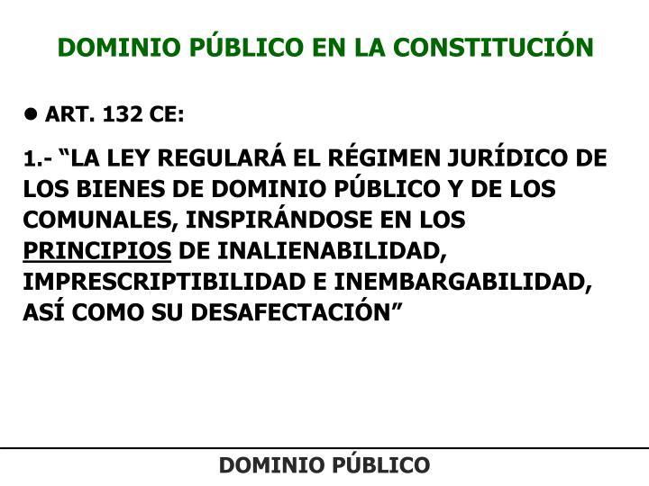 DOMINIO PÚBLICO EN LA CONSTITUCIÓN