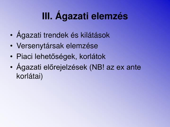 III. Ágazati elemzés