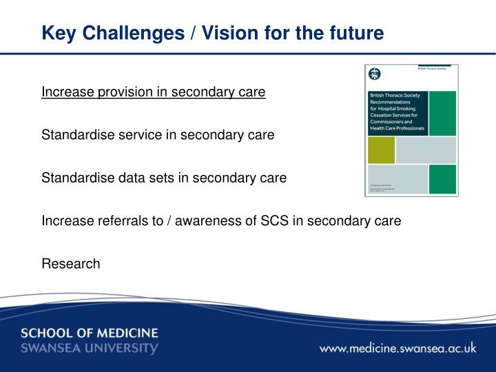 Key Challenges / Vision for the future