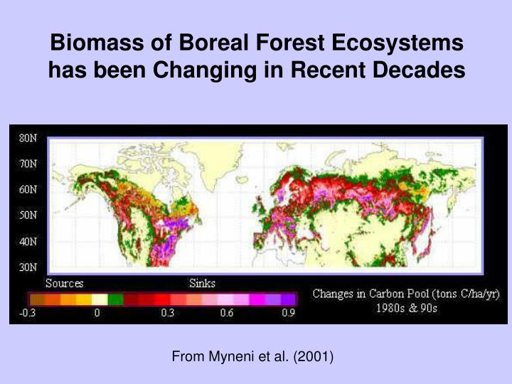 Biomass of Boreal Forest Ecosystems