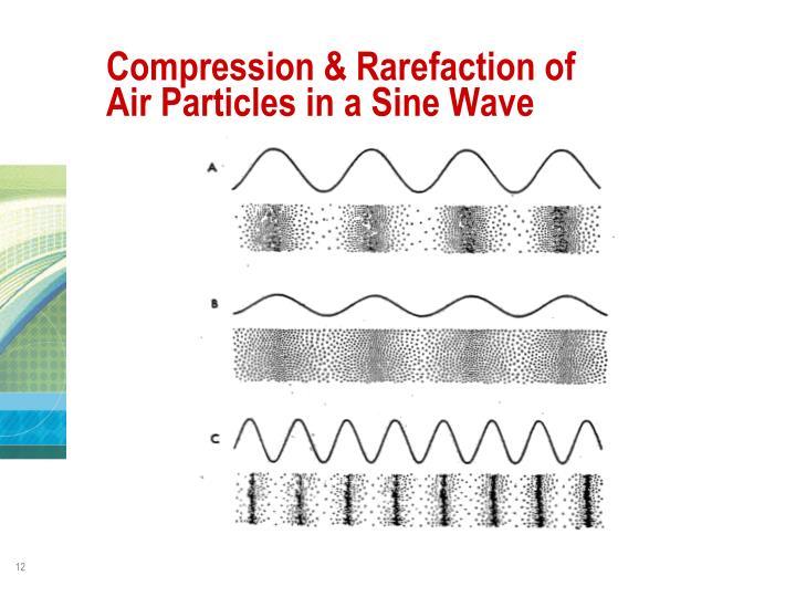 Compression & Rarefaction of