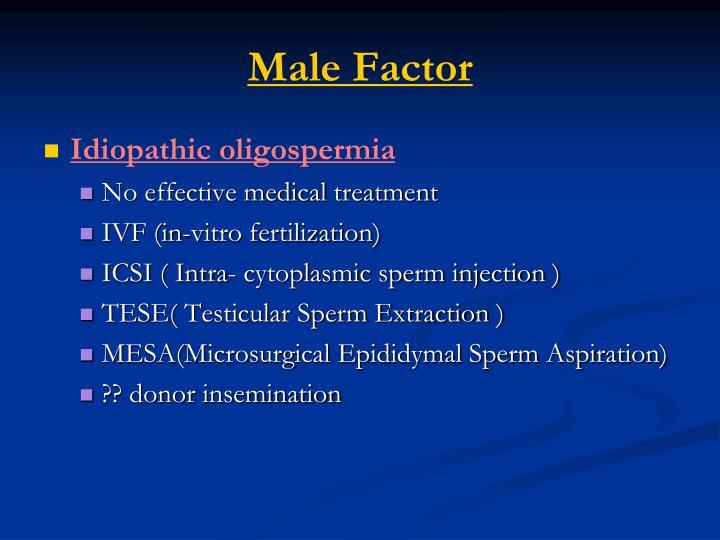 Male Factor