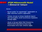 efqm m kemmellik modeli b t nsel bir yakla m1