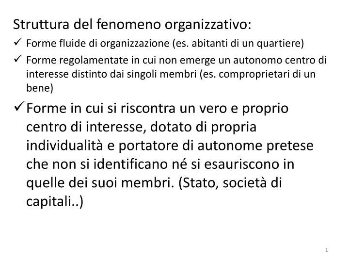 Struttura del fenomeno organizzativo: