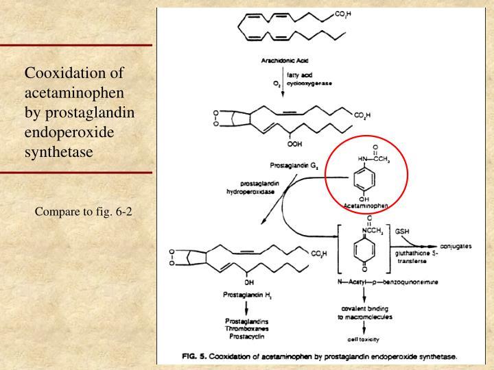 Cooxidation of acetaminophen